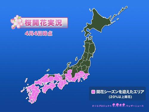ウェザーニュース 桜開花実況(4月4日)