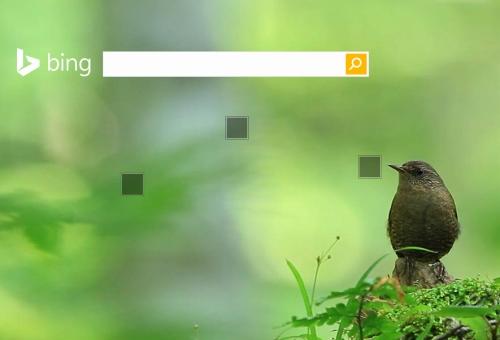 Bing_s