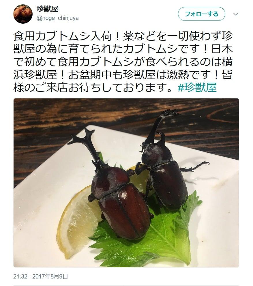 """【成虫】""""食用カブトムシ""""の食べ方を聞いた レモンが添えられている理由が判明!"""