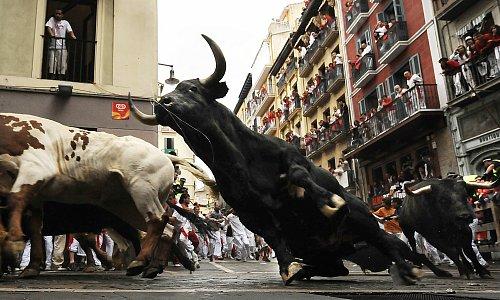 スペイン「牛追い祭り」