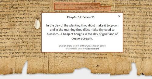 �ʸ��饤�쥯�����ʥ���������(The Great Isaiah Scroll) 1QIsaa ��17��11���