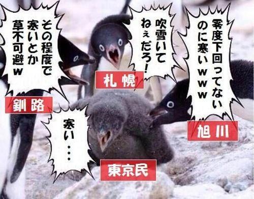 「この程度で寒いの?」「雪くらいで騒ぐなよ」 北海道民特有の「北から目線」、一般人にウザがられる