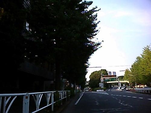 『400-CAM001』で撮影した風景 その2