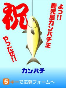 鹿児島カンパチ釣り王国