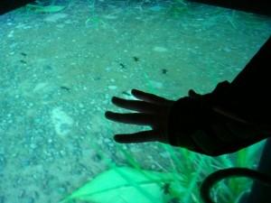 手袋を付けて画面に手を置くと、蟻が寄ってくる(チームたまごちゃん提供)